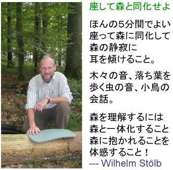 Wil Stoelb.JPG