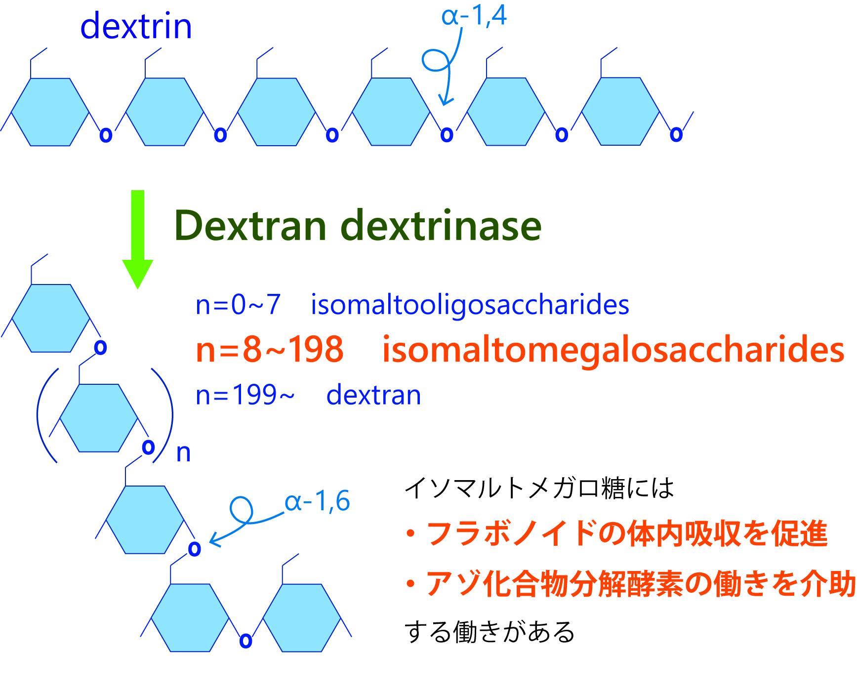 分子 デキストラン 低